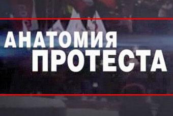 Анатомия протеста