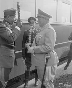 Маннергейм и Геринг